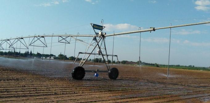 ¿Cuál es el mejor sistema de riego para tu cultivo?